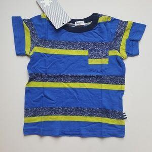 Splendid Boys Blue/Green Striped T Shirt